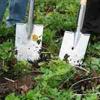 garden services southampton